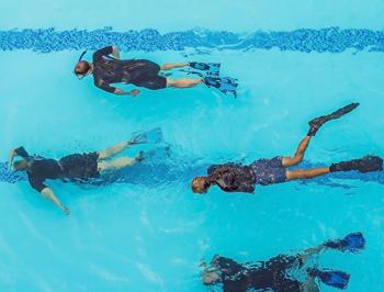 image listing je veux pratiquer mon activité dans - piscine 4 personnes
